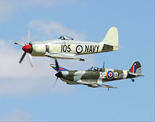 Australian Sea Fury & Spitfire Replica Photo Print for Sale
