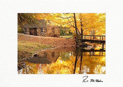 Autumn Reflections Boxed Thanksgiving Cards