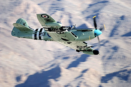 British WWII Fairey Firefly Aircraft Photo Print