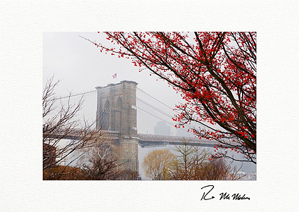 Brooklyn Bridge Winter Berries NYC Boxed Christmas Cards