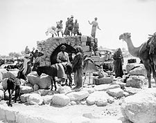 Caravan Resting the Donkeys & Camels 1930s Photo Print for Sale