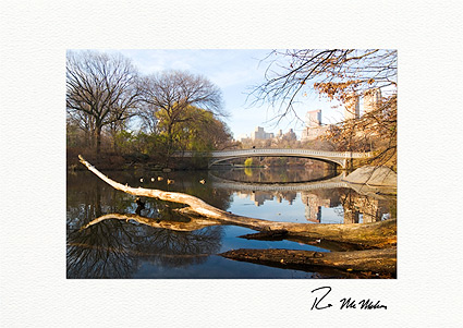 Central Park Bow Bridge Autumn Boxed Greeting Cards