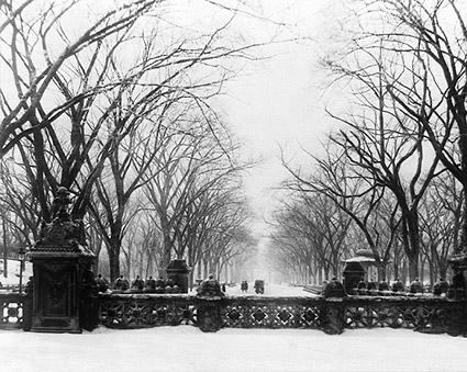 Central Park New York After Snow Fall 1906 Photo Print