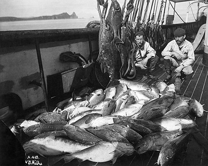 Early Alaska Fishermen w/ Halibut & Codfish Photo Print