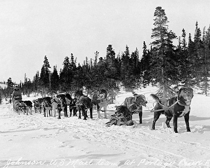 Erick Johnson & U.S. Mail Dog Sled Team Photo Print