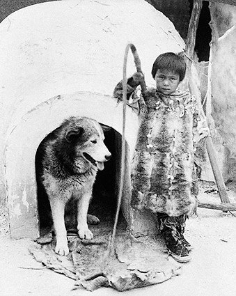 Eskimo Boy & Sled Dog by Igloo World's Fair St. Louis 1904 Photo Print