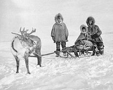 Eskimo / Inuit w/ Reindeer & Sled Alaska Photo Print for Sale