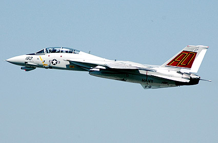 F-14 / F-14D Tomcat Grim Reapers VF-101 Photo Print