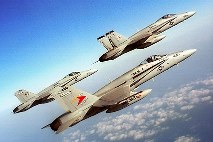 F/A-18 Hornets Formation VFA-81 F-18 Photo Print