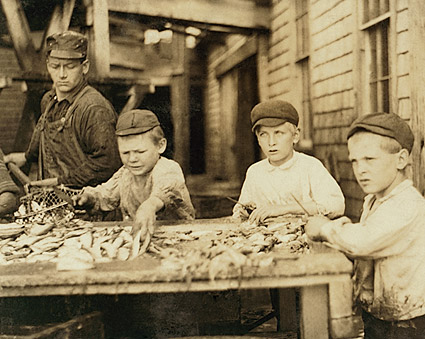 Fish Cutters Child Labor Lewis Hine 1911 Photo Print