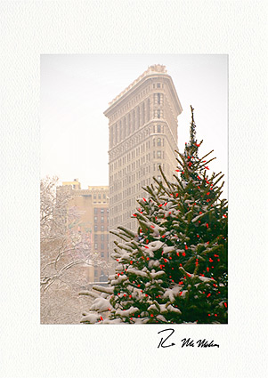 Flatiron building christmas tree nyc personalized christmas cards colourmoves