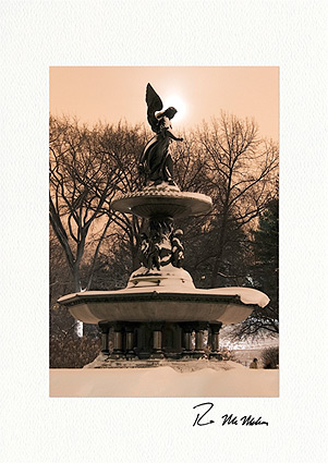 Moonlit Bethesda Fountain Angel, Central Park Individual Christmas Cards