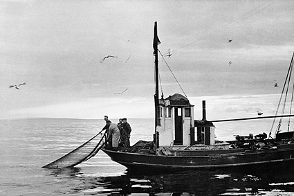 Norwegian Fishermen Pull Fishing Net into Boat Photo Print