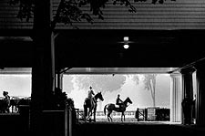 Oklahoma Horse Race Track Saratoga, NY 1963 Photo Print for Sale