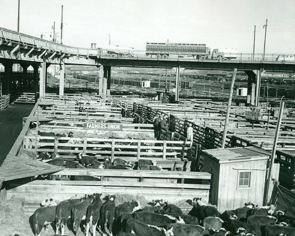 Omaha Stockyards Farmers Union Livestock Commission Photo Print