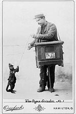 Organ Grinder Musician w/ Monkey 1892 Photo Print for Sale