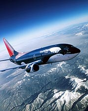 Southwest Airlines Boeing 737 SeaWorld 'Shamu' Photo Print for Sale