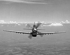 P-51 / P-51D Mustang WWII Aircraft Photo Print for Sale