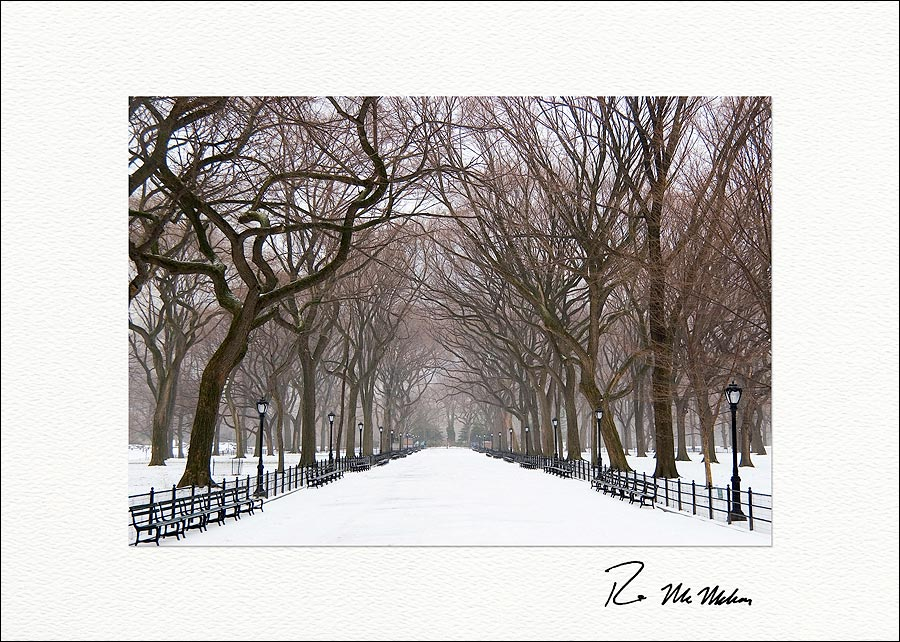 poets walk winter central park boxed holiday cards - Boxed Holiday Cards