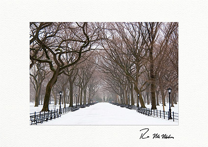 Poet's Walk Winter, Central Park Individual Holiday Cards