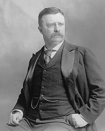 President Theodore Roosevelt Early Portrait Photo Print