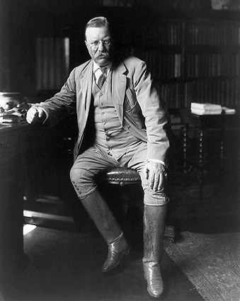 President Theodore Roosevelt Library Photo Print
