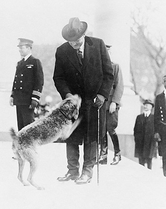 President Warren Harding & Dog 'Laddie Boy' Photo Print