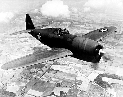 Republic P-47D / P-47 Thunderbolt in Flight Photo Print