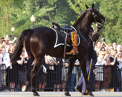 Ronald Reagan Funeral Riderless Horse Photo Print