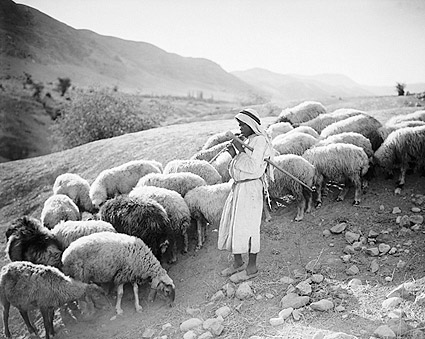 Shepherd Boy & Sheep Jordan River 1920s Photo Print