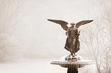The Bethesda Fountain Central Park NYC Photo Print for Sale