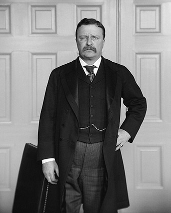 Theodore Teddy Roosevelt Brady Portrait Photo Print
