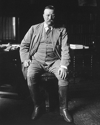Theodore Teddy Roosevelt Library Portrait Photo Print