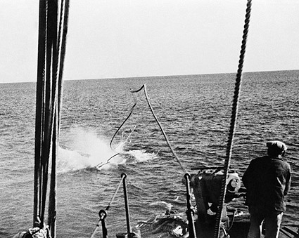 Whaler's Whaling Harpoon Hits Humpback Whale 1930s Photo Print