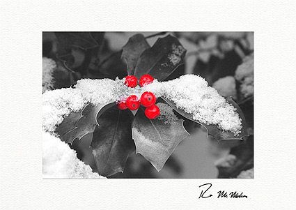 winter holly personalized christmas cards - Custom Christmas Cards For Business
