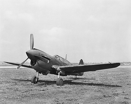 WWII Curtiss P-40 Warhawk  Photo Print