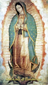 Our Lady of Guadalupe Laminated Holy Card with Prayer