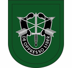 10th Special Forces Group Flash Decal