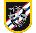 46th Special Forces Group Flash Decal