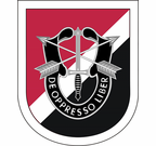 6th Special Forces Group Flash Decal