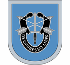 9th Special Forces Group Flash Decal