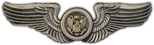 Air Crew Wings Lapel Pin