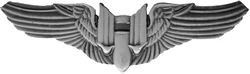 Gunner Wings Pin