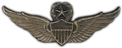 "Master Army Aviator Wings 2 1/4"" Lapel Pin"