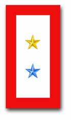 'ONE GOLD AND ONE BLUE STAR' SERVICE FLAG VINYL TRANSFER DECAL