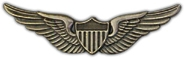 Pilot Wings Lapel Pin 2 1/4""