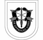 Special Forces Training Group Flash