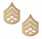 US Marine Corps ENLISTED Anodized Gold Rank Insignia