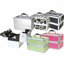 Holiday Special Carry On Makeup Artist Case