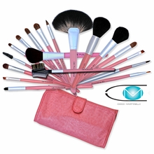 Pink Pro Makeup Brush Set